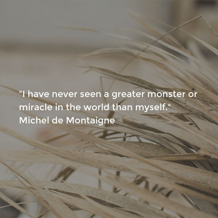 """I have never seen a greater monster or miracle in the world than myself."" Michel de Montaigne"