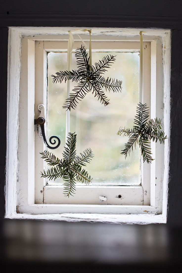 Yew snowflakes Photo by Britt Willoughby Dyer