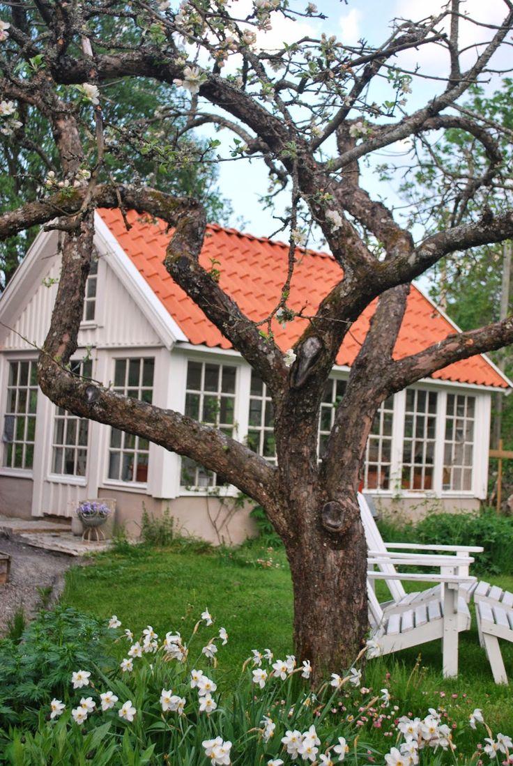 Trädgård plank trädgård : 475 best Växthus / Orangeri /Uterum images on Pinterest | Garden ...