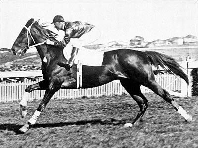 Phar Lap became a national icon in Australia. The huge horse measured 17.1 hands high while his heart weighed 13.7 pounds, significantly more compared to the average horse heart. Phar Lap netted 37 wins across 51 races, and set eight track records before his mysterious death in 1932. Forensic investigations conducted over 70 years later would go on to prove that Phar Lap did ingest a large dose of arsenic shortly before his death, though the source was never proven or found.