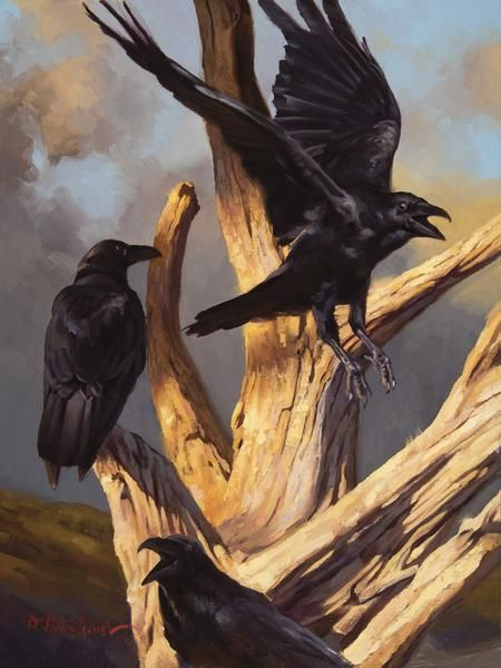 "Crows Ravens:  ""Stark #Raven Mad,"" by Dustin Van Wechel. Oil on linen, 16 x 12 in (30.48h x 40.64w cm)."