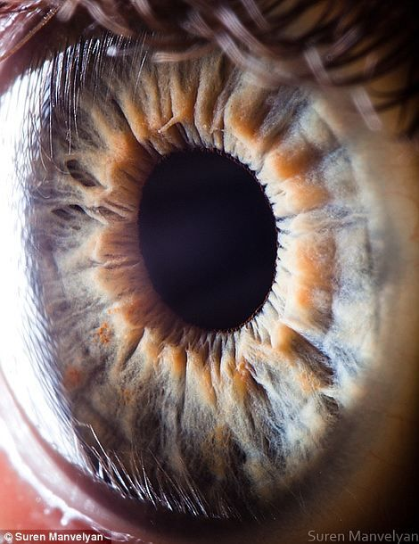 This is an extreme closeup of your eye