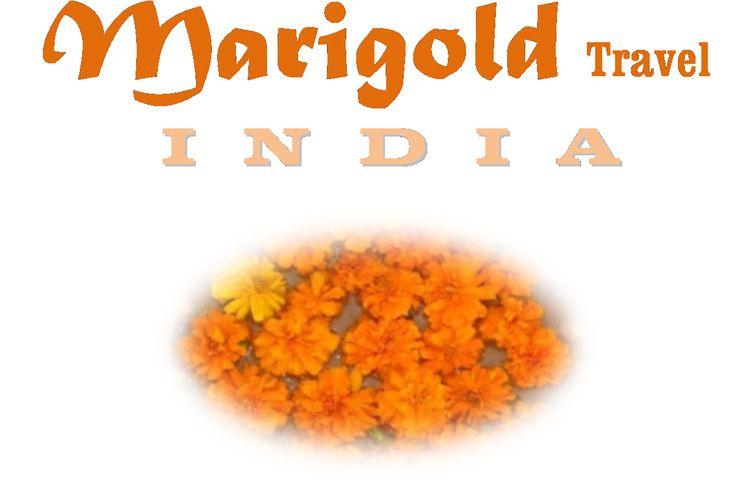 Marigold Travel