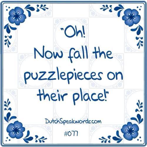 #dunglish #dutchspeakwords Make that the cat wise