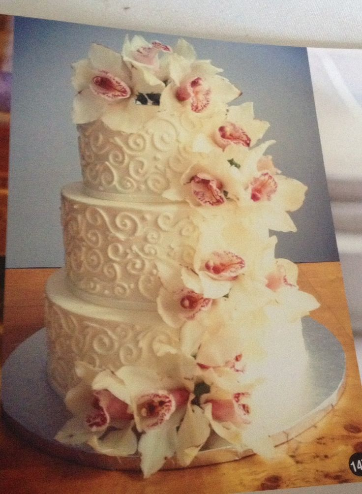 Image result for blush orchid cake | My Wedding | Pinterest | Orchid ...