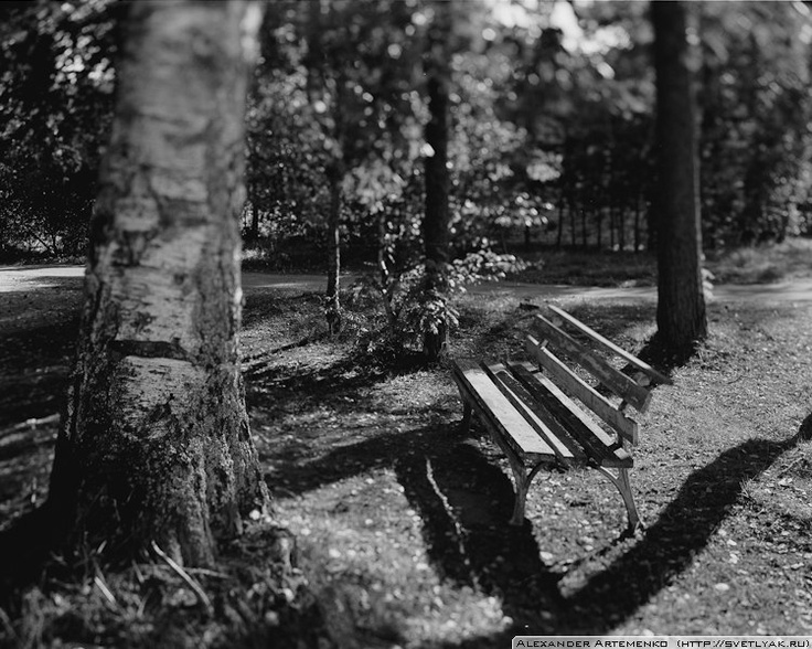 Don't know what is the reason, but I like benches. I even started a project, shooting different benches by my handmade 6x5 pinhole camera.    But this image was taken by my favorite Linhof Technika III and Rodenstock 150mm f5.6. Ilford Delta 100.