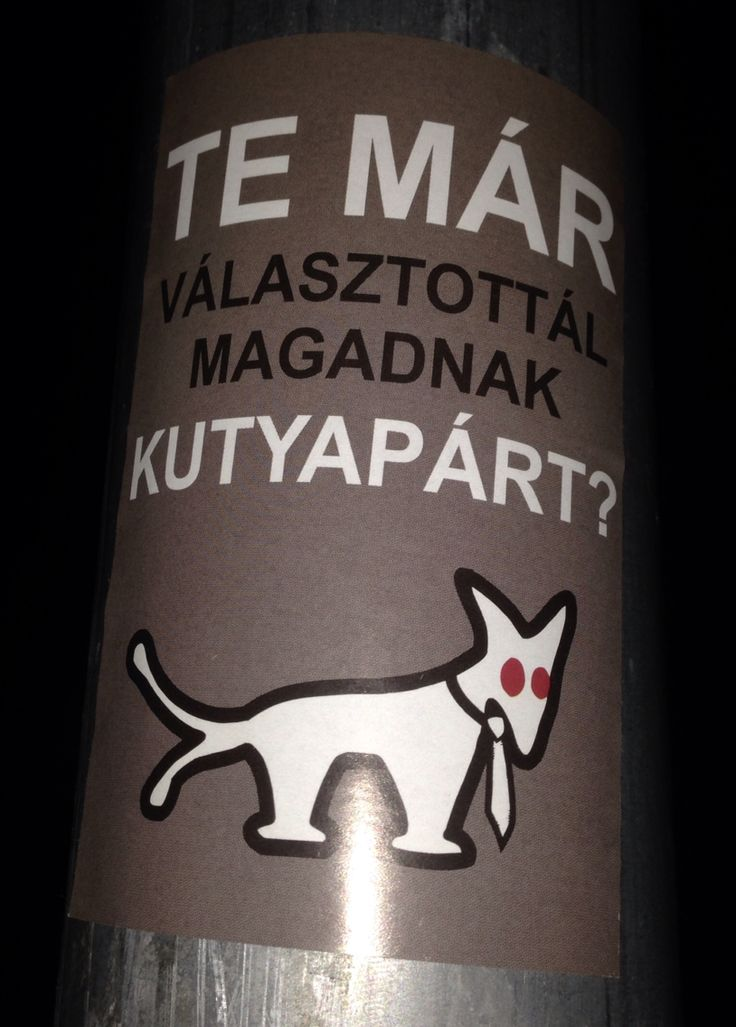 Something related to a 2tail dog. Budapest street art in a 10x15cm format.