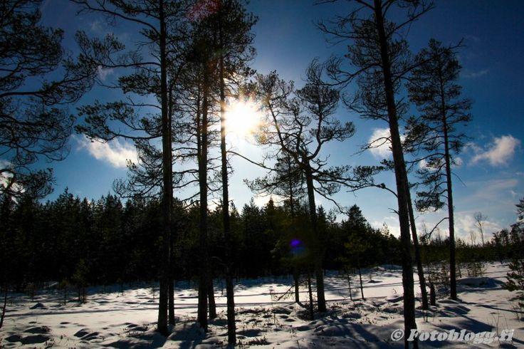 Långskäret & Penikar m.m 1.3.2016 - Fotoblogg.fi
