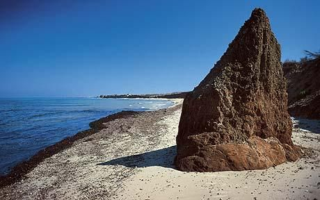the rugged shores of Torre Guaceto in Puglia