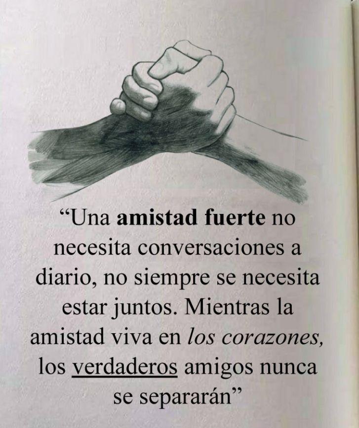 Amen Pensamientos De Amistad Frases De Amistad Frases Amigos Verdaderos