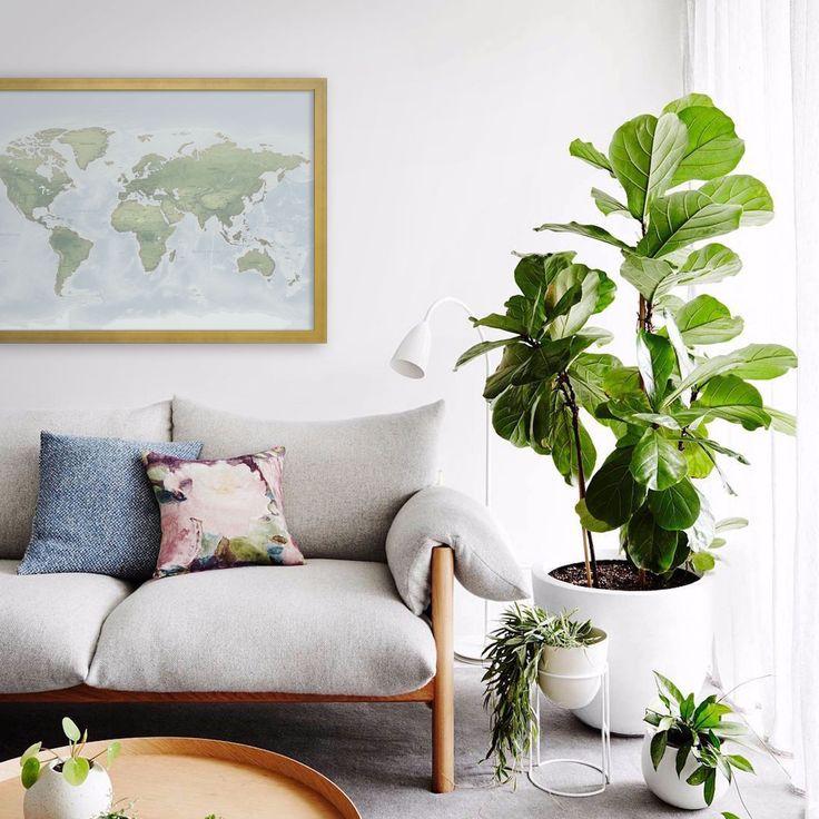 8 best Basement Bed images on Pinterest Home ideas, Decorating