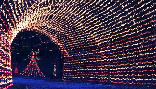 Tilles Park known for it's Christmas Lights display