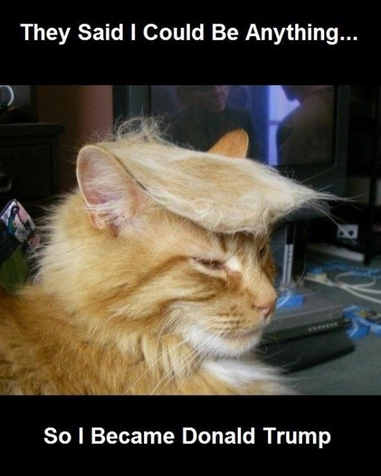 They said I could be anything. So I became Donald Trump.