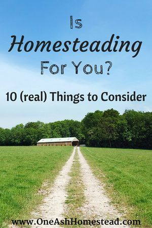 10 best images about homestead life on pinterest root for How to start homesteading today