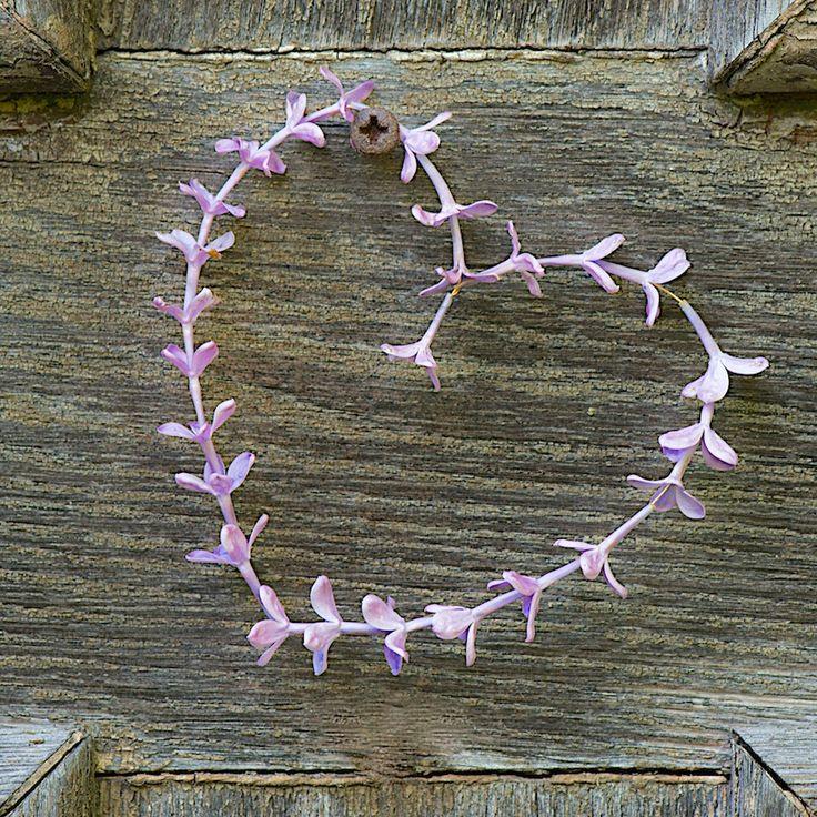 lilac heart wreath