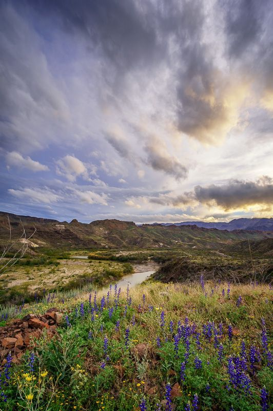 Big Bend Ranch State Park, Texas | Texas | Texas travel, State parks