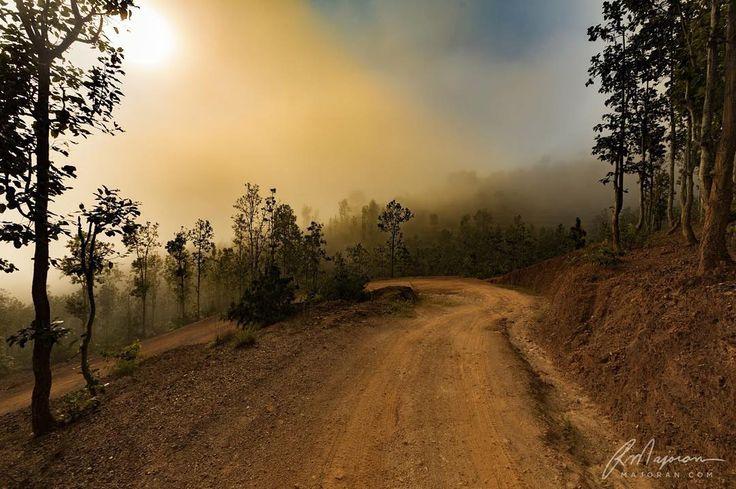 Run with endurance. Heb. 12:1