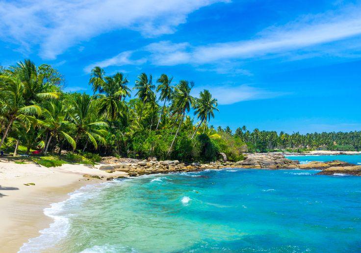 Tangalle er en charmerende fiskerby i det sydøstlige Sri Lanka. Her er gyldne sandstrande med palmer, der vajer i vinden og turkisblåt vand, som er lige til at hoppe i!