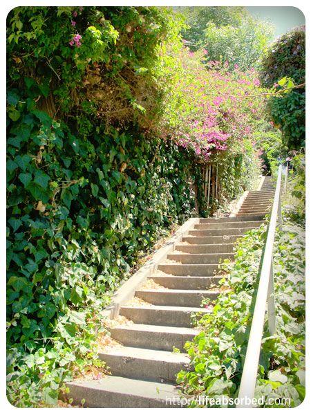 Silver Lake Secret Stair Walk, Los Angeles