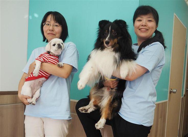 ペット栄養管理士の日暮祐季さん(左)と藤塚さん(右)は動物保護団体での経験も持つ