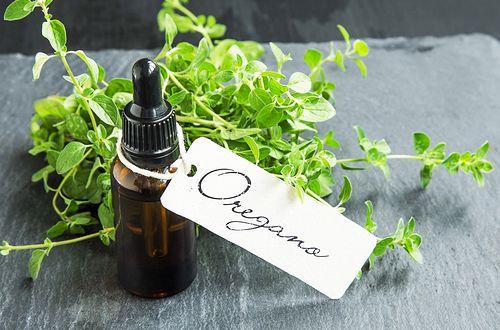 オレガノには抗菌効果、抗ウィルス、防腐、抗酸化、抗炎症などがあり風邪の予防、早期改善にとても効果的なハーブです。これがあれば市販のうがい薬は必要ありません。知れば簡単!自家製オレガノオイルで風邪の予防をする方法を紹介します。