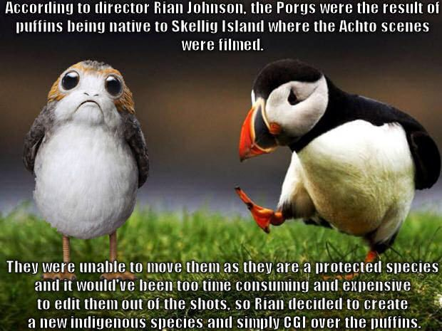 Unpopular opinion puffin CGIed over - 9GAG