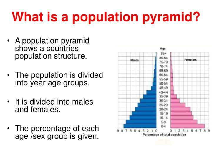 50++ Population pyramid worksheet Free Download