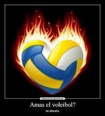 Resultado de imagen para voleibol frases