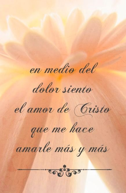 En medio del dolor siento el amor de Cristo...