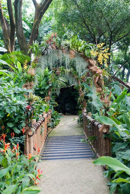 Beautiful design of natural garden entrance path. This walkway showcases a dizzying assortment of plants, flowers, ferns, and vines.