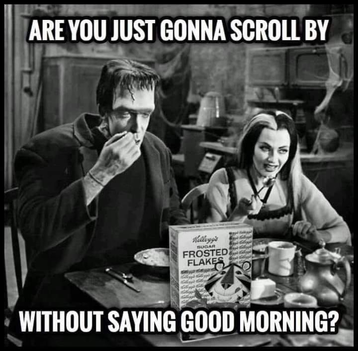 Good Morning Happy Saturday Where You Really Just Going To Scroll By Seriously Stop Sit For A Bit Good Morning Funny Good Morning Greetings Good Morning