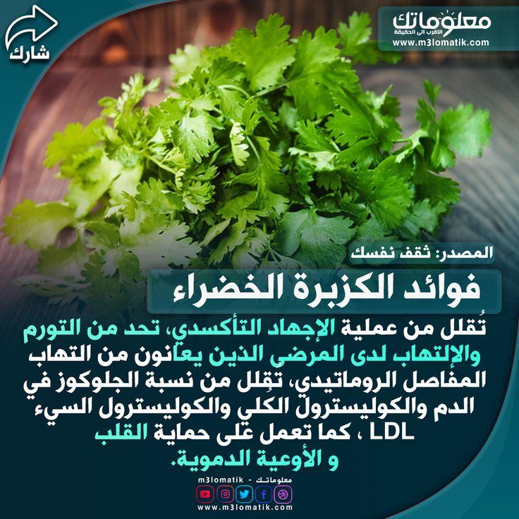 فوائد الكزبرة الخضراء Herbs