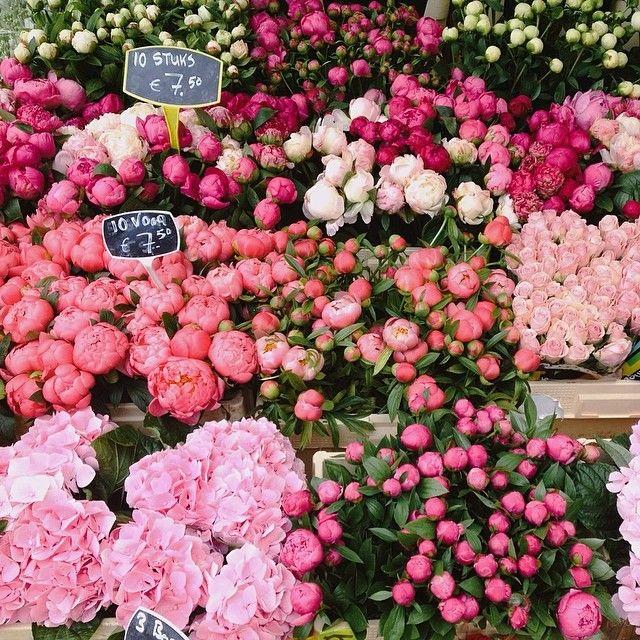 #floral market ✿⊱✦★ ♥ ♡༺✿ ☾♡ ♥ ♫ La-la-la Bonne vie ♪ ♥❀ ♢♦ ♡ ❊ ** Have a Nice Day! ** ❊ ღ‿ ❀♥ ~ Wed 1st July 2015 ~ ❤♡༻ ☆༺❀ .•` ✿⊱ ♡༻ ღ☀ᴀ ρᴇᴀcᴇғυʟ ρᴀʀᴀᴅısᴇ¸.•` ✿⊱╮ ♡