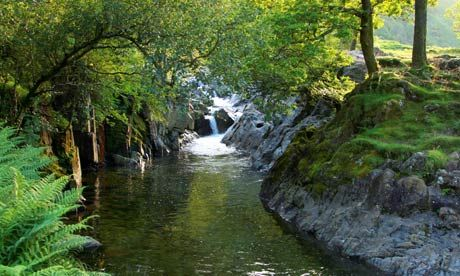 Wild swimming at Galleny Force, Langstrath Beck, Borrowdale, Lake District.