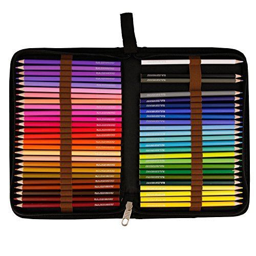 US Art Supply 50 Piece Adult Coloring Book Artist Grade Colored Pencil Set Plastic Carry Case and Bonus Zippered Carry Case