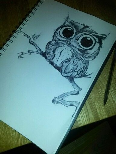 funny owl drawing - photo #23