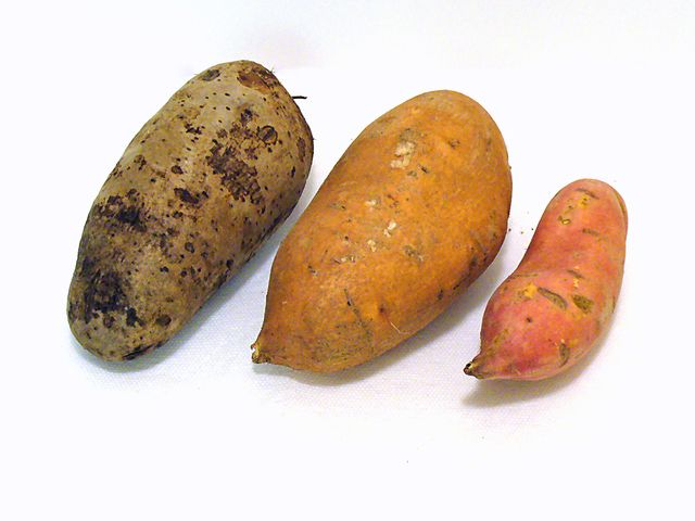 What's the Difference Between Sweet Potatoes and Yams?: Sweet Potatoes and Yams
