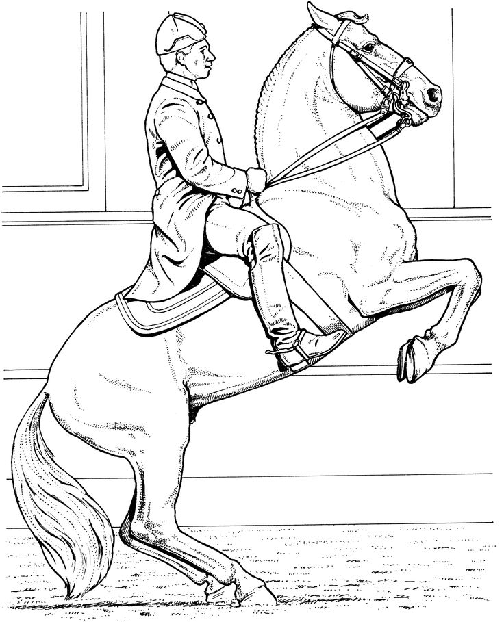 find this pin and more on horse coloring pages by leesonlabrash