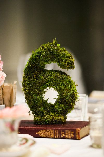 THIS a los números de las mesas y le pones little figurines como en terrariums y par de suculentas y voilá Moss table numbers for an event. | via Style Me Pretty, photo by http://abritandablonde.com/