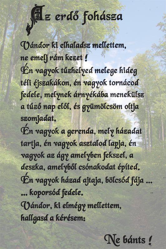 Az erdő fohásza