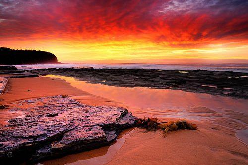 Title: Aught Red Afore Location: Turimetta Beach
