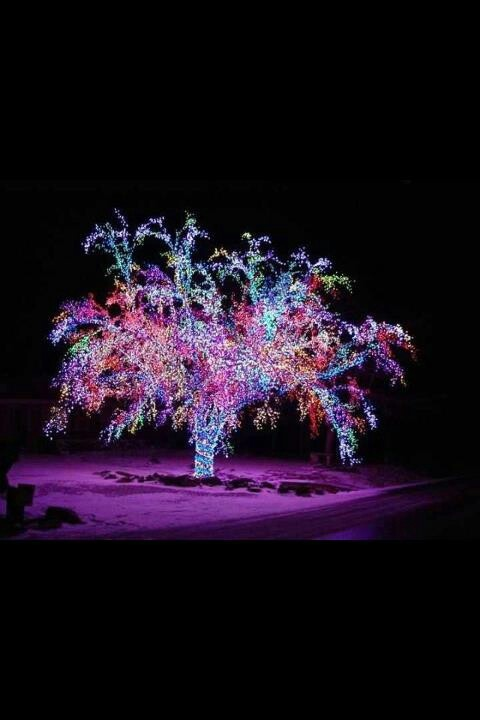 Best light up the night images on pinterest home