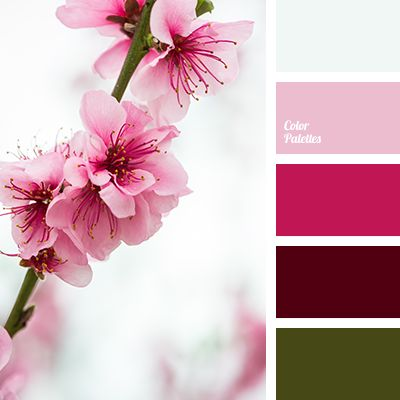 2505 best images about inspiring color combinations on Red and pink colour combination