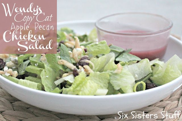 Wendy't Copy Cat Apple Pecan Chicken Salad! Sixsistersstuff.com #salad #wendys #recipe