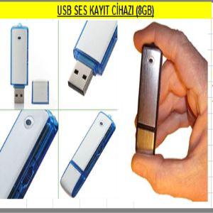 Usb Ses Kayıt Cihazı (8GB)