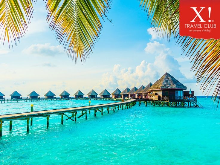 The great waters and marine life of #Maldives are its highlights and Bluetribe Moofushi offers wonderful diving experience