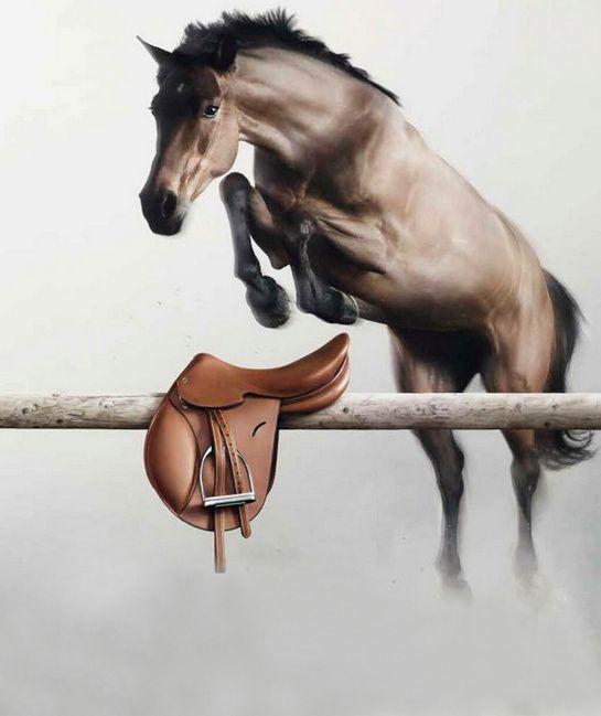 Saut Hermès Grand Palais April Cavale leather saddle Simon Delestre 1 | Fashion | Vogue