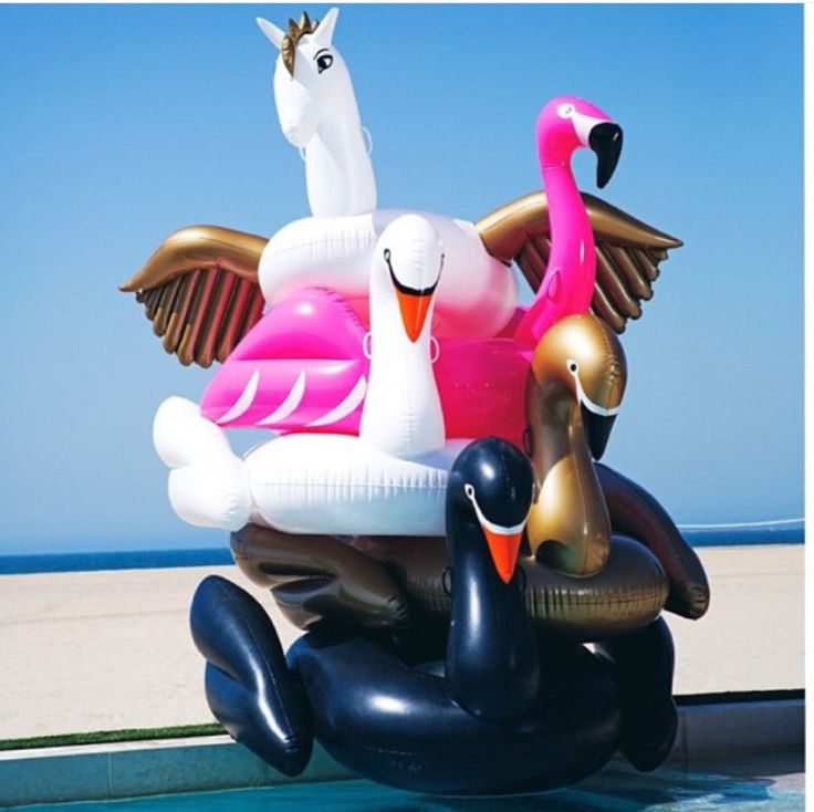 @ashleyfussell23 http://www.lesliespool.com/Swimline-Giant-Swan-Float-L90621-Inflatable-Ride-On-Pool-Float/L90621.htm