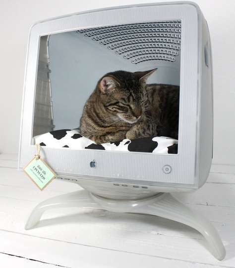 Upcycled Apple Monitor - Cat Bed