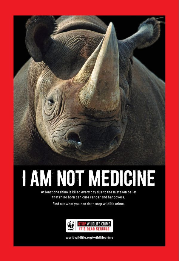 Do you believe #rhinos are medicine? Neither do we. Please RT if you want to #stopwildlifecrime